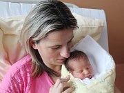 Ema Týzlová z Malechova (2900g, 47 cm) uviděla světlo světa v klatovské porodnici 3. ledna v 1.15 hodin. Rodiče Eva a Vratislav věděli, že budou mít holčičku. Z narození sestřičky se radují dvojčata Eliška a Vráťa (12) a Vojta (8), kterým se splnilo přání