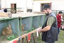 Chovatelská výstava drobného zvířectva ve Strážově