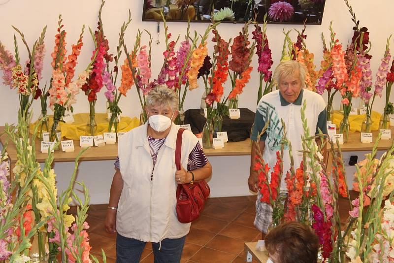 Výstava mečíků a jiřinek v Klatovech.
