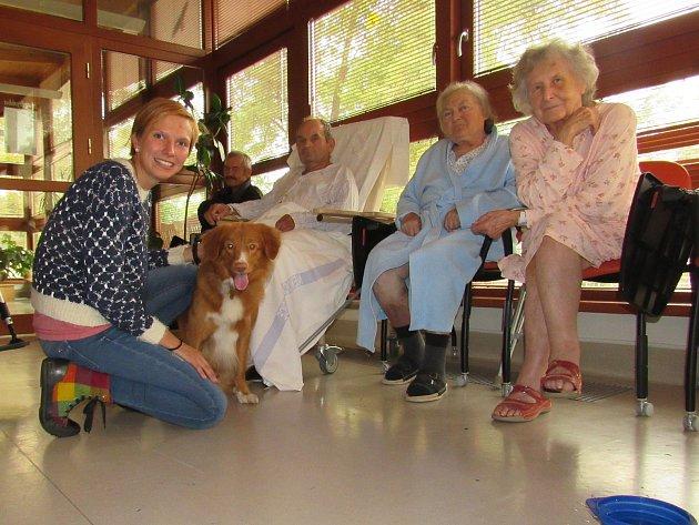 Canisterapie v nemocnici v Sušici.