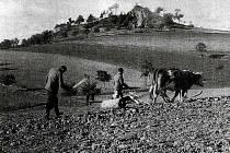 Dobový snímek zemědělců na Klatovsku