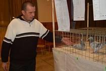 Stanislav Jáchym se chovu holubů věnuje už od dětství a spolupořádal i výstavu ve Vřeskovicích, kde nám ukázal jednoho z výborných závodníků.