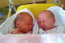 Tereza a Viktorie Valečkovy z Předslavi se narodily v klatovské porodnici 15. ledna a jsou tak prvními dvojčátky v letošním roce narozenými v Klatovech. První se narodila Terezka v 8.47 hodin (2230 g), Viktorka pak v 8.49 hodin (2590 g). Z holčiček mají r