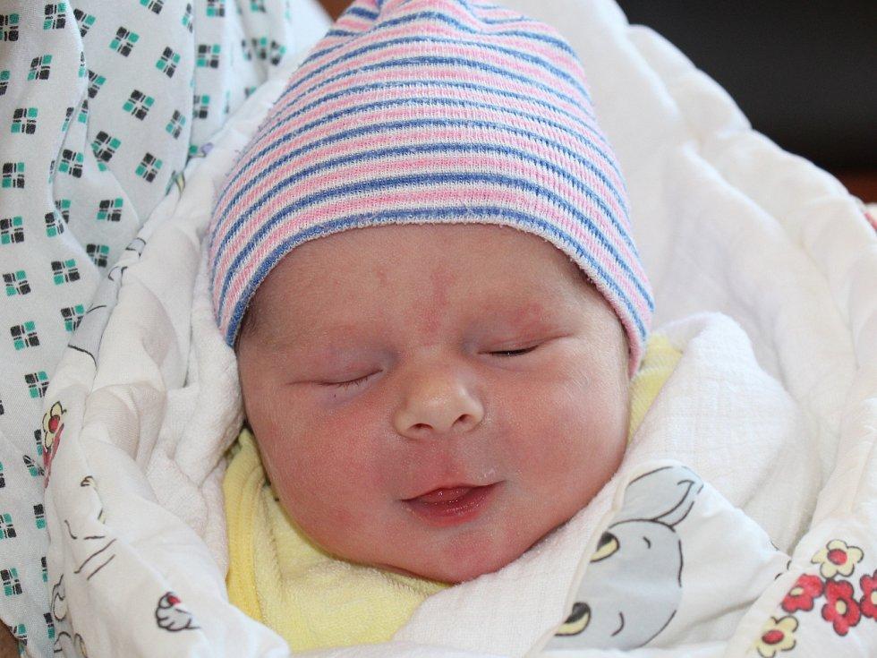 Zuzana Řeřichová z Ústalče (3000 g, 50 cm) se narodila v klatovské porodnici 22. listopadu ve 3.47 hodin. Rodiče Marie a Jan si nechali jako překvapení, zda Barunka (1,5) bude mít sestřičku nebo brášku.