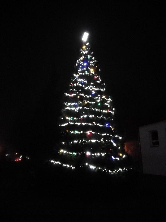 Vánoční strom v Kolinci.