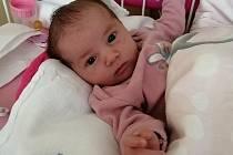 Anděla Pikhartová zLub u Klatov se narodila vklatovské porodnici 18. června ve 4:00 hodin (3600 g, 53 cm) rodičům Haně a Kamilovi. Doma se na sestřičku těšil Vojtíšek.