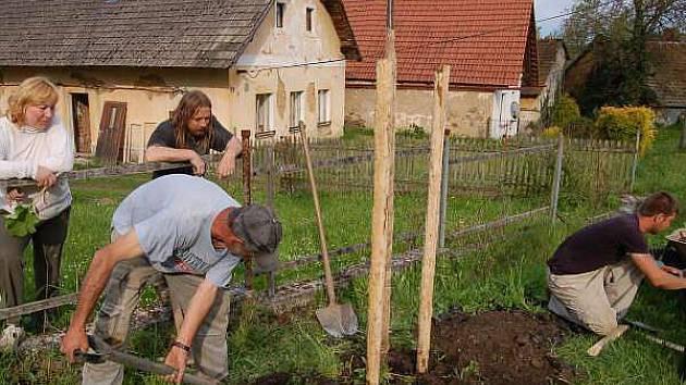 Sázení stromů ve Zbyslavi
