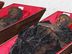 Stěhování mumií z klatovských katakomb