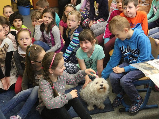 Beseda s vedoucí klatovského psího útulku Miloslavou Šeflovou v základní škole ve Školní ulici v Nýrsku