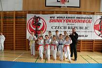 Závodníkům z klubu Kyokushin karate Dolany se v uplynulém roce dařilo, připsali si několik úspěchů.
