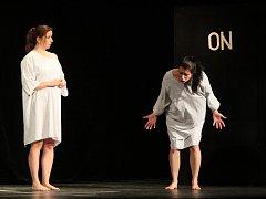 Součástí 35. západočeské divadelní přehlídky v Horažďovicích bylo i představení divadelního spolku Žumbera Plzeň nazvané Nevím.