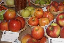 Ovoce a zelenina podraží