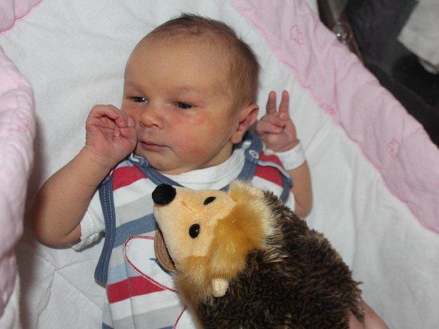 Vanesa Valentová z Horažďovic (3320 gramů) se narodila v klatovské porodnici 31. ledna v 10.32 hodin. Rodiče Vendula a Martin věděli dopředu, že jejich prvorozené miminko bude holčička.