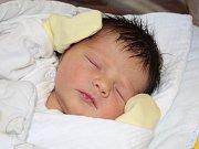 Nella Vačková z Nýrska (3030 g, 47 cm) se narodila v klatovské porodnici 20. října v 19.22 hodin. Rodiče Anna a Jaroslav věděli, že jejich prvorozené dítě bude dcera.