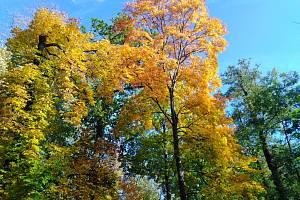 Podzim barví přírodu.