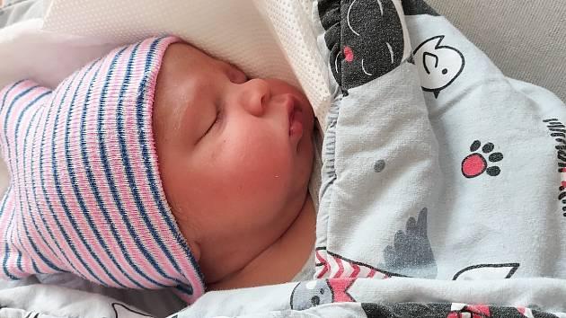 Marcus Helbig ze Sušice se narodil 27. srpna ve 12:17 hodin (3890 g, 49 cm). Narodil se rodičům Lindě a Martinovi. Pohlaví miminka si nechali jako překvapení.