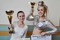 Sušičtí na mistrovství republiky kadeřnické soutěže opět bodovali.