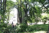 Ulomená větev lípy spadla vedle historické studny, která je oblíbeným odpočinkovým místem. Při pádu ulomila ještě větev nedaleko rostoucího javoru.