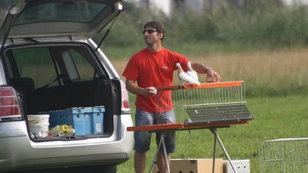 Závod mistrovství Evropy akrobatických holubů ve Švihově