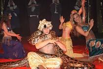 Představení cirkusu Jo - Joo v Klatovech