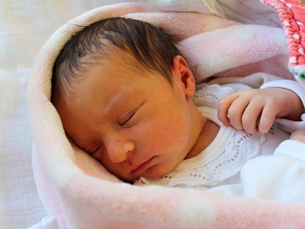 Mia Majerová z Běhařova se narodila v klatovské porodnici 12. února v 8:20 hodin (2800 g). Rodiče Martina a David dopředu věděli, že jejich prvorozeným miminkem bude holčička.