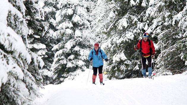 Běžkaři u Modravy, leden 2016