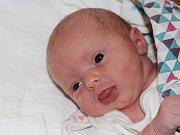 Linda Lajpoldová ze Slavošovic (2940 g, 45 cm) se narodila v klatovské porodnici 4. prosince ve 21.55 hodin. Rodiče Dominika a Radek přivítali očekávanou dceru na světě společně. Na sestřičku doma čeká Denis (11).