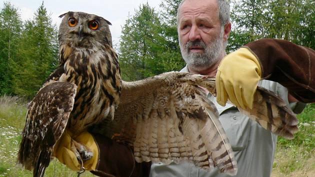 Petr Juha ukazuje zraněné křídlo výra velkého