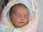 Vanessa Fialová z Přeštic (3430 g, 48 cm) se narodila v klatovské porodnici 9. listopadu ve 13.09 hodin. Rodiče Kateřina a Daniel přivítali svoji dceru na svět společně.