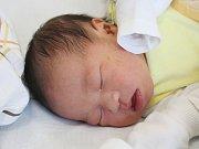 VuQuoc Trung z Plzně (3620 g, 48 cm) se narodila v klatovské porodnici 3. dubna v 8.36 hodin.