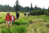 Výpravy do divočiny na Šumavě