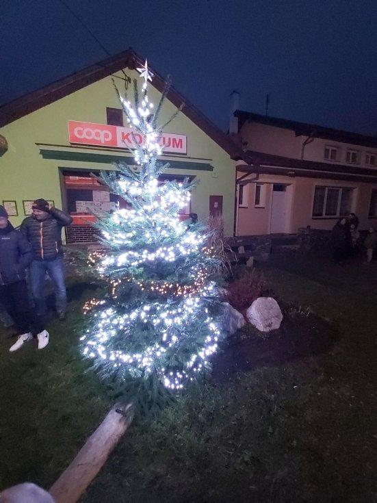 Vánoční strom ve Velkých Hydčicích