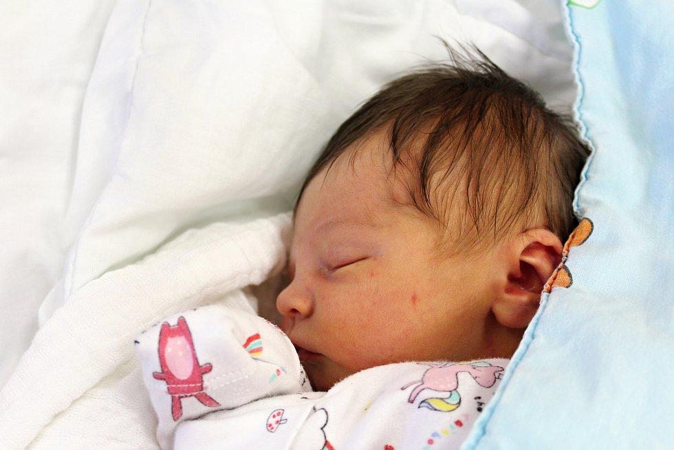 Parvati Emília Sieglová z Chebu se narodila v klatovské porodnici 29. února v 11:26 hodin (3310 g). Na své první miminko se rodiče Ladislava a David moc těšili. A i když se malá Parvati Emília narodila na přestupný rok, na dárcích a každoroční oslavě se p