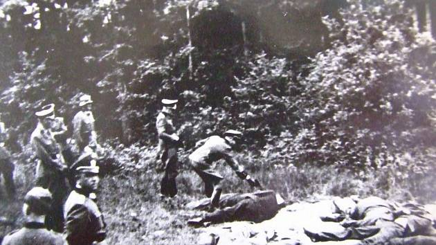 Smutná scéna ve Spáleném lese u Klatov.