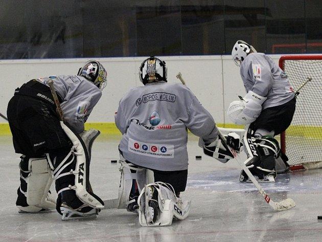 Na prvním tréninku na ledě v Poděbradech přivítal trenér Petr Martínek 33 hráčů.
