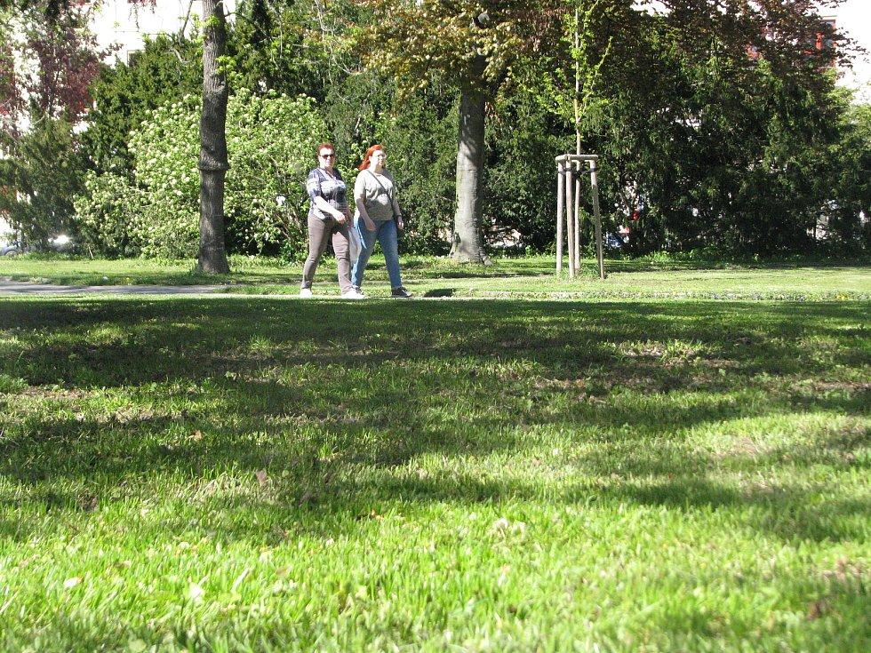 V Komenského parku v Kolíně.