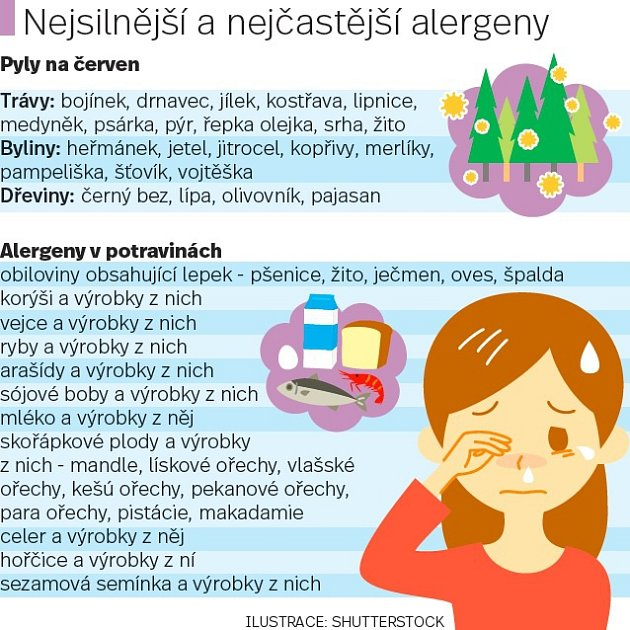 Alergie. Infografika