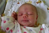 Do třetice se mamince Jiřině a tatínkovi Miroslavovi z Kouřimi narodila zase holčička. Nikola Janoušková se rozplakala 28. května 2014 s mírami 50 centimetrů a 3240 gramů. Doma se na ni těšily sestřičky Jaruška (7) a Míša (5).