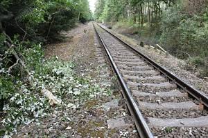 U Plaňan narazil vlak do stromu. Ilustrační foto.