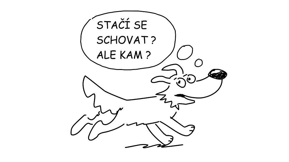 Časy se psem
