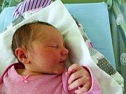 Aneta Chocholoušová se narodila 1.12.2018 s mírami 3200 g a 48 cm. V Ohařích bude bydlet se sestřičkou Emou (3) , maminkou Pavlínou a tatínkem Zdeňkem.