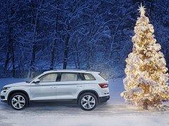 Přeprava vánočního stromku má svá pravidla. Jinak vám hrozí problémy i pokuta.
