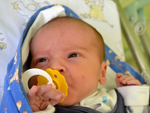 Jan Petrnoušek se prvně rozplakal 12. května 2014 s výškou 50 centimetrů a váhou 3485 gramů. V rodném Kolíně se z něho radují maminka Věra, tatínek Jaromír a sourozenci Lenka (14) s Ondřejem (7).