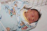 Vojtěše a Josefovi Dvořákovým z Kutné Hory se 23. srpna 2010 narodil syn Jan Dvořák. Měřil 50 centimetrů a vážil 3390 gramů. Doma na něj čeká čtyřletá sestra Natálie.