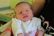 Barbora Adamcová se narodila 20. února 2018, vážila 2990 gramů a měřila 50 centimetrů. Svou prvorozenou dcerku si domů do Kolína odvezli maminka Pavlína a tatínek Miroslav.