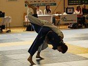 Kolínští judisté získali na republikovém šampionátu v Hranicích dvě bronzové medaile.
