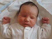 Daniel Dvořák se rozkřičel 25. října 2016. Jeho poporodní míry činily 49 centimetrů a 3425 gramů. Doma vSulovicích ho přivítali maminka Michaela, tatínek Jiří a šestiletá Terezka.