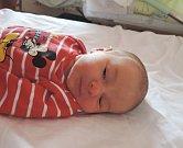 Hana Plešingerová se poprvé rozhlédla 29. března 2016. Po narození měřila 50 centimetrů a vážila 2975 gramů. Smaminkou Eliškou a tatínkem Petrem bude vyrůstat vKolíně.