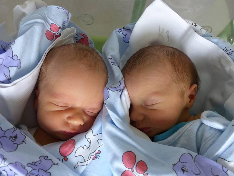 Alex (vlevo) a Jan Hrbkovi se narodili 5. října 2021 v kolínské porodnici. Alex vážil 2795 g a měřil 50 cm, Jan vážil 2580 g a měřil 47 cm. Do Kutné Hory odjeli s maminkou Terezou a tatínkem Janem.