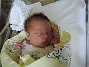 Prvním potomkem maminky Marcely a tatínka Jiřího zTýnce n. L. je dcera. Stela Jirousková přišla na svět 24. července 2017 smírami 49 centimetrů a 3440 gramů.